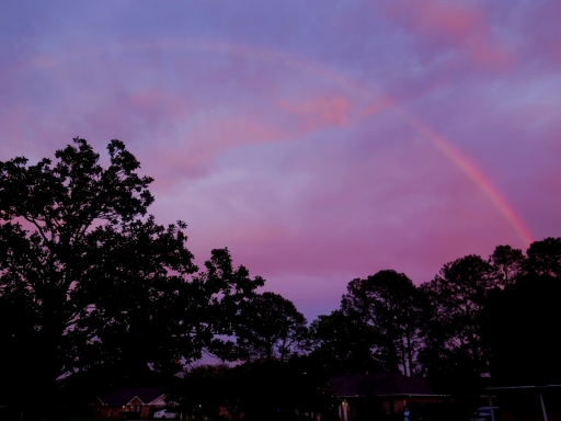 Rainbow over Homes - IMG_8830