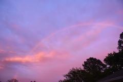 Dale's Rainbow - 1 - DSC_2212