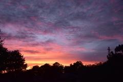 Dale's Sunset - 3 - DSC_2224