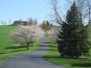 Shenandoah Valley Flowering Trees