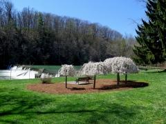 Wildwood Park - cropped - IMG_8430