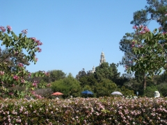 Balboa-Park-Spring-Colors-02-California-Tower