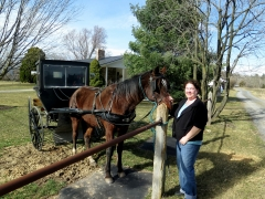 Maylee with Horse and Buggy - IMG_2511.JPG