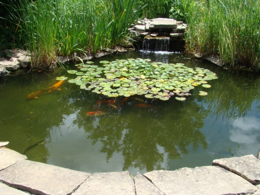 Cedar-Valley-Arboretum-and-Botanic-Gardens-05