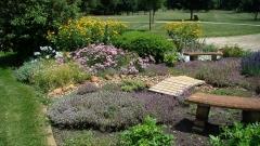 Cedar-Valley-Arboretum-and-Botanic-Gardens-03