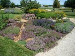 Cedar-Valley-Arboretum-and-Botanic-Gardens-04