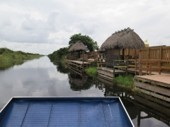 Airboat Hut and Tour - IMG_4340.JPG