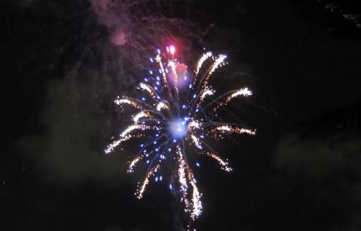 Fireworks - 1 - IMG_3894_1.jpg