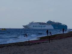 Ferry Leaves - IMG_3865_1.jpg