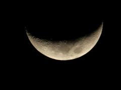 moonfromDale - 3 - m2