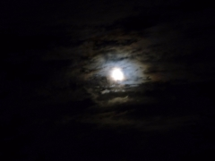 moonfromDale - 4 - P1010179a (1)