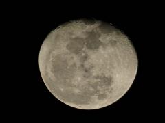 moonfromDale - 5 - P1010337
