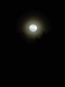 moonfromDale - 7 - P1010531