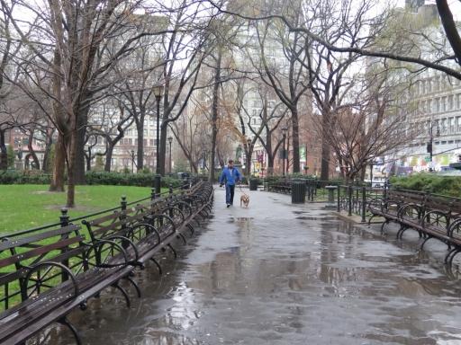 Grant Park - New York City - IMG_1146_1