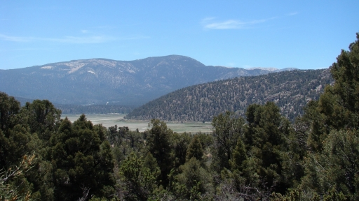 Pacific-Crest-Trail-near-Big-Bear-21