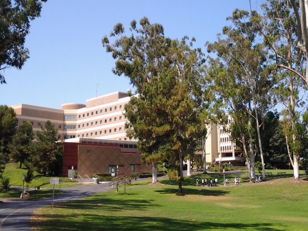 University of California, Irvine Campus – Picturesque ... Uc Irvine Campus Tour