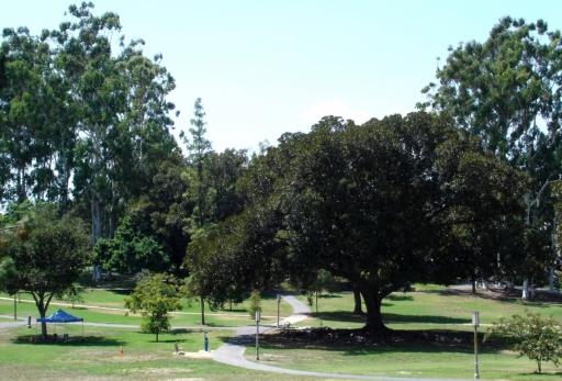 UC-Irvine-Campus-01