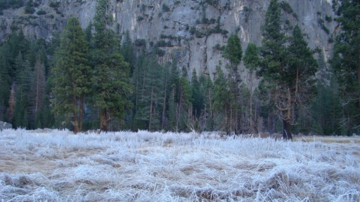 Yosemite-Valley-06-meadow-frost